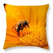 Just Plain Busy Throw Pillow