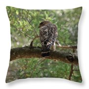 Just Ready To Attack Throw Pillow