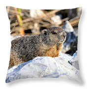 Just Relaxing Throw Pillow