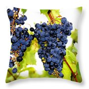 Just Ripe Throw Pillow