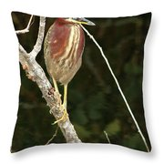 Just Sit Here And Wait Throw Pillow