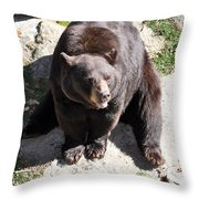 Just Sitting Around Throw Pillow