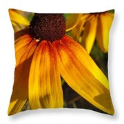Just Smile Throw Pillow
