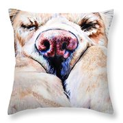 Just Snoozing Throw Pillow