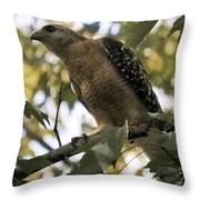 Just Spotted Dinner Throw Pillow