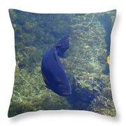 Just Swimming Around Throw Pillow