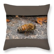 Just Taking A Stroll Throw Pillow