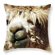 Just Too Cute To Be Ugly Throw Pillow