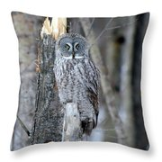 Just Us Tree Trunks Throw Pillow
