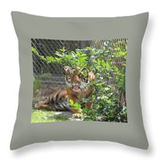 Just Waking Up Throw Pillow