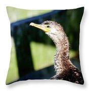 Juvenile Cormorant Profile Throw Pillow
