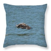 Juvenile Eagle Fishing Pickwick Lake Tennessee 031620161315 Throw Pillow