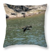 Juvenile Eagle Going Fishing Pickwick Lake Tennessee 031620161304 Throw Pillow