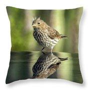 Juvenile House Sparrow 0689 Throw Pillow