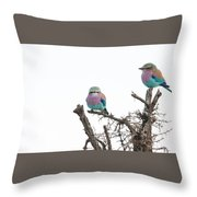 Juvenile Lilac Breasted Roller Throw Pillow