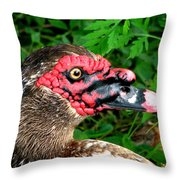 Juvenile Muscovy Duck Throw Pillow