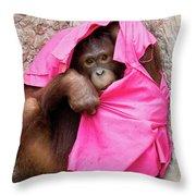 Juvenile Orangutan Throw Pillow