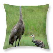 Juvenile Sandhill Crane With Protective Papa Throw Pillow