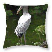 Juvenile Wood Stork Throw Pillow