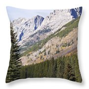 K-country And Bighorn Sheep Throw Pillow