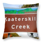 Kaaterskill Creek Throw Pillow