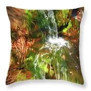 Waterfall Of Love Throw Pillow