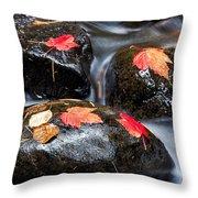 Kadunce River Throw Pillow