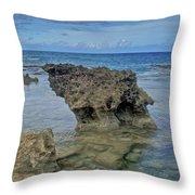 Kaena Point  7868 Throw Pillow