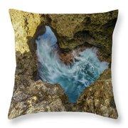 Kaena Point Trail Throw Pillow