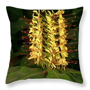 Kahili Ginger Throw Pillow