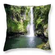 Kaiate Falls Throw Pillow