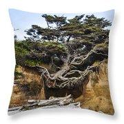 Kalaloch Hanging Tree Throw Pillow