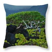 Kalaupapa Beach Scene Throw Pillow