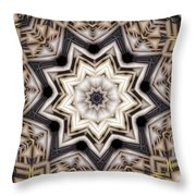 Kaleidoscope 110 Throw Pillow