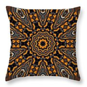 Kaleidoscope 25 Throw Pillow