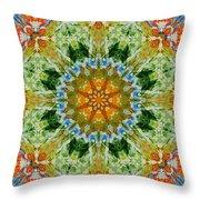 Kaleidoscope 3 Throw Pillow
