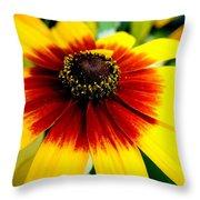 Kaleidoscope Bouquet Throw Pillow