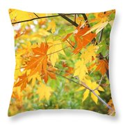 Kaleidoscope Of Color Throw Pillow