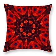 Kalidescope Abstract 031211 Throw Pillow