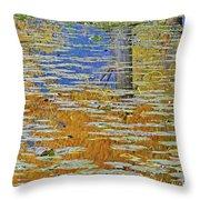 Kaloya Pond Autumn Throw Pillow