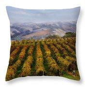 Kalthoff Common Vineyard Throw Pillow