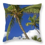 Kamaole Beach Throw Pillow by Ron Dahlquist - Printscapes