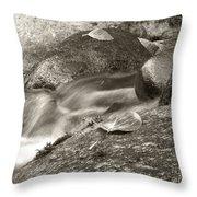 Kanaka Creek Bw Throw Pillow