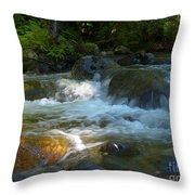 Kanaka Creek Throw Pillow