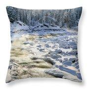 Kanasi Winter Throw Pillow