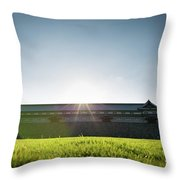 Kanazawa Castle Throw Pillow