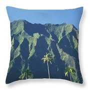 Kaneohe Palm Throw Pillow