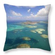 Kaneohe Sandbar Throw Pillow
