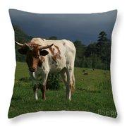 Kapalua Hawaiian Steer Makawao Maui Hawaii Throw Pillow