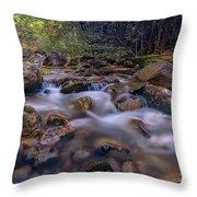 Katahdin Stream Throw Pillow